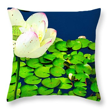 Throw Pillow featuring the photograph Hold Me Tight by Zafer Gurel