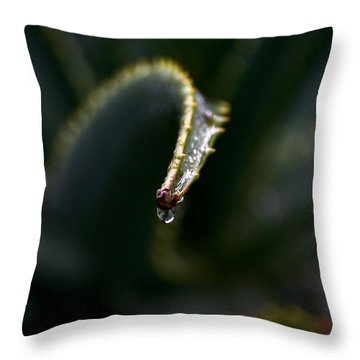 Throw Pillow featuring the photograph Hold On by Nadalyn Larsen