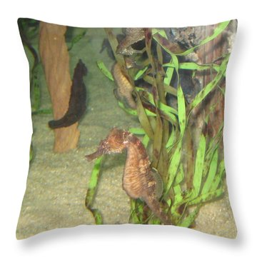 Hold Your Horses Throw Pillow