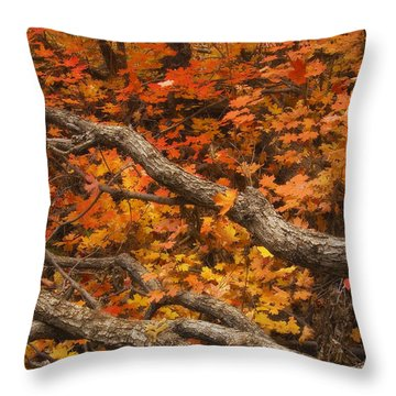 Holding Back Throw Pillow by Peter Coskun