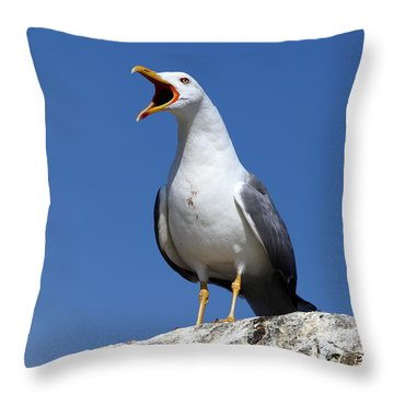 Holding Forth Throw Pillow by James Brunker