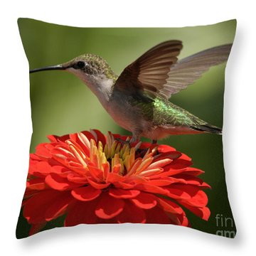 Throw Pillow featuring the photograph Holding On by Olivia Hardwicke
