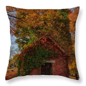 Throw Pillow featuring the photograph Holding Up The  Fall Colors by Jeff Folger