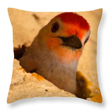 Throw Pillow featuring the photograph Hole In The Wall by AnnaJo Vahle