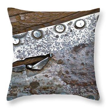 Hole Patch 3 John Muir Woods Throw Pillow by Bill Owen