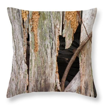 Throw Pillow featuring the photograph Holey Smokehouse by Nick Kirby