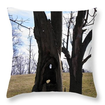 Throw Pillow featuring the photograph Holey Tree Trunk by Nick Kirby