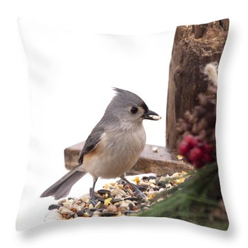Holiday Bird Throw Pillow
