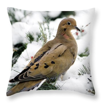 Holiday Dove Throw Pillow by Christina Rollo