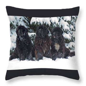 Holiday Greetings Throw Pillow