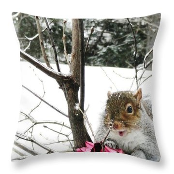 Holiday Joy Throw Pillow by Mike Breau