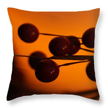 Throw Pillow featuring the photograph Holiday Warmth 1 by Linda Shafer