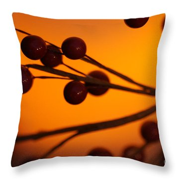 Throw Pillow featuring the photograph Holiday Warmth 2 by Linda Shafer