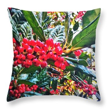 Holly Berries In The Sun Throw Pillow