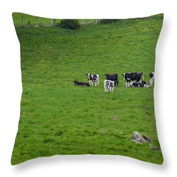 Holsteins Throw Pillow by Bill Wakeley