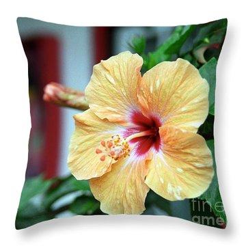 Holualoa Hibiscus Throw Pillow
