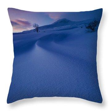 Norway Throw Pillows