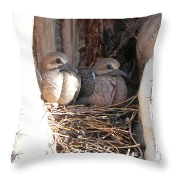 Throw Pillow featuring the photograph Home All Alone by Deb Halloran