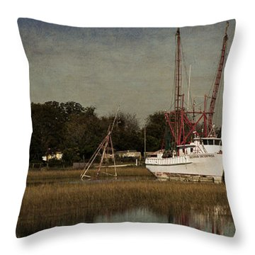 Home For The Day Throw Pillow