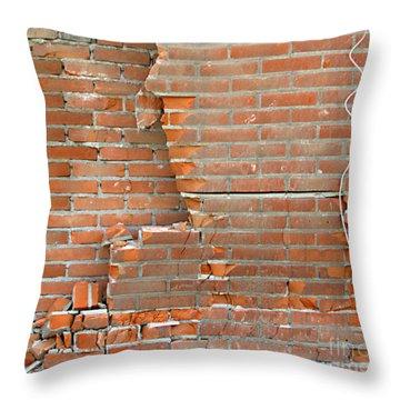 Home Improvement Throw Pillow