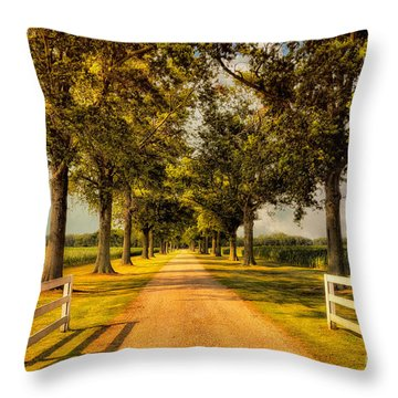 Home In Time For Supper Throw Pillow by Lois Bryan