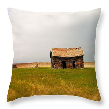 Home On The Range  Throw Pillow by Jeff Swan
