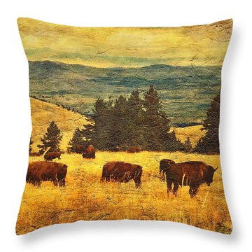 Home On The Range Throw Pillow by Lianne Schneider