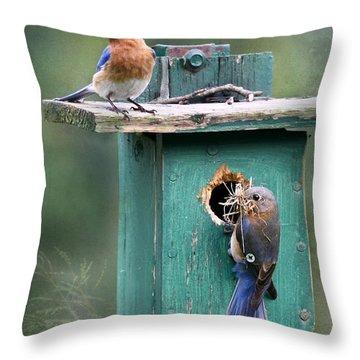 Home Sweet Home Throw Pillow by Lori Deiter