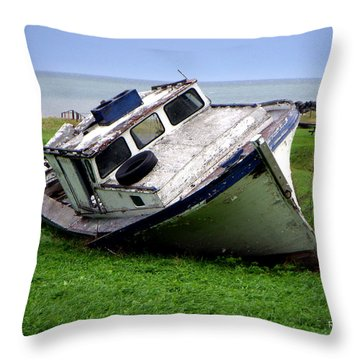 Home To Stay Throw Pillow by Ron Haist