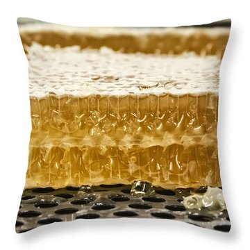 Homerville Gold Throw Pillow by Michael White
