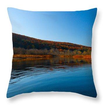 Honeoye Lake Inlet Throw Pillow by Steve Clough