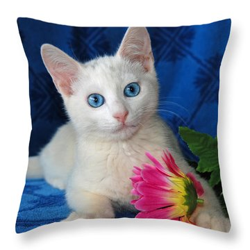 Honest I Found It Like This Throw Pillow by Kenny Francis