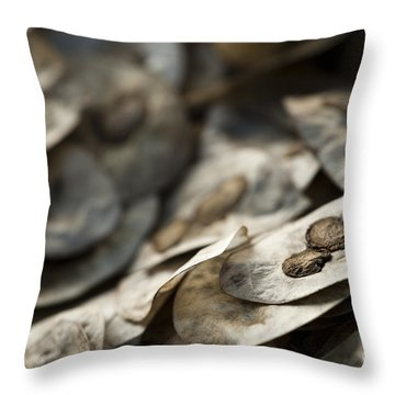 Honesty Seeds Throw Pillow by Anne Gilbert