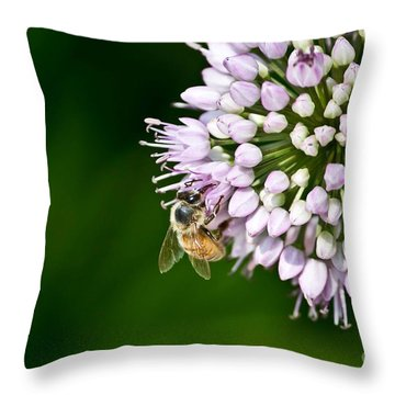 Honey Bee And Lavender Flower Throw Pillow