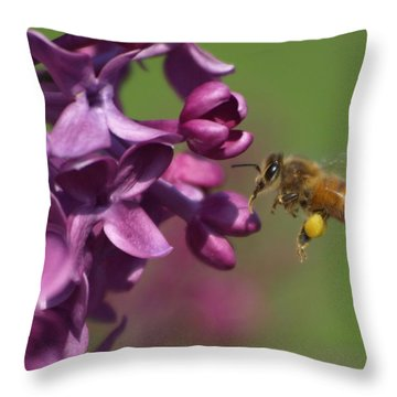Honey Bee And Lilac Throw Pillow