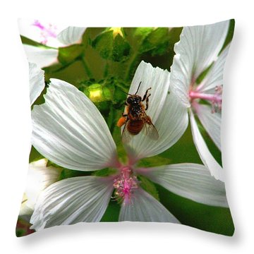 Honey Bee In The Mallow Throw Pillow