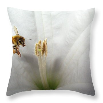 Honey Bee Up Close And Personal Throw Pillow by Joyce Dickens