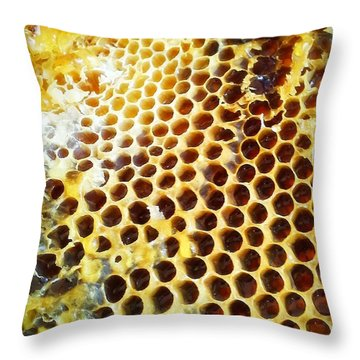 Throw Pillow featuring the photograph Honey Honey by Kristine Nora