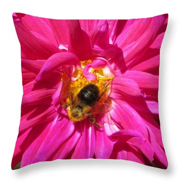 Throw Pillow featuring the photograph Honey I Am Working by Jeanette Oberholtzer