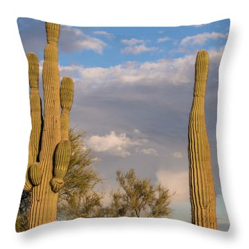 Throw Pillow featuring the photograph Honey Why Do I Have To Hold All The Babies? by Carolina Liechtenstein