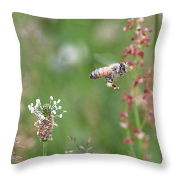 Honeybee Flying In A Meadow Throw Pillow by Lucinda VanVleck