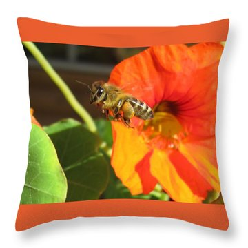 Honeybee Leaving Nasturtium With A Full Pollen Basket Throw Pillow by Lucinda VanVleck