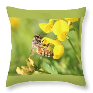 honeybee on Birdsfool Trefoil Throw Pillow by Lucinda VanVleck