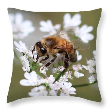 Honeybee On Cilantro Throw Pillow by Lucinda VanVleck