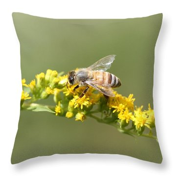 Honeybee On Goldenrod Twig Throw Pillow by Lucinda VanVleck