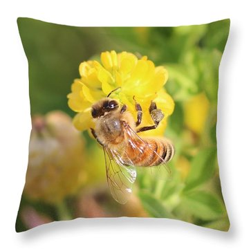 Honeybee On Hop Clover Throw Pillow by Lucinda VanVleck