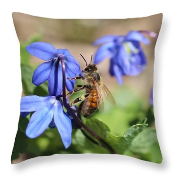 Honeybee On Siberian Squill Throw Pillow by Lucinda VanVleck