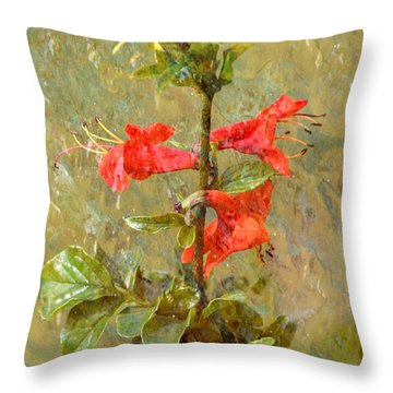 Throw Pillow featuring the photograph Honeysuckle- Classical by Darla Wood
