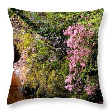 Throw Pillow featuring the photograph Honeysuckle On Buckatunna Creek by Lanita Williams