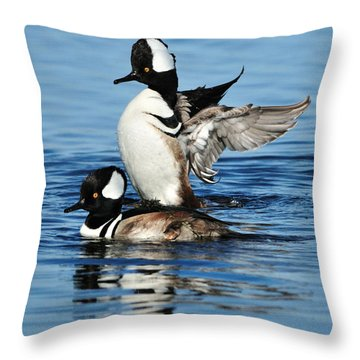 Throw Pillow featuring the photograph Hooded Mergansers by Bradford Martin